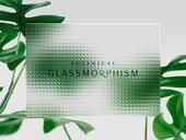 백그라운드, 글래스모피즘, 식물학 (주제), 유리, 투명 (비침), 깨끗함 (좋은상태), 프레임, 야자잎, 몬스테라