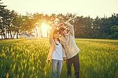 숲, 햇빛 (빛효과), 땅거미 (여명), 보리밭, 생명, 편안함 (컨셉), 감성, 사람손 (주요신체부분), 자연, 사랑 (컨셉), 하트 (컨셉심볼)