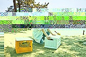 차박캠핑 (캠핑), 캠핑, 숲, 준비, 즐거움 (컨셉), 계절, 자연, 여행, 햇빛 (빛효과)