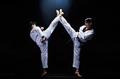 태권도, 스포츠, 시합 (스포츠), 올림픽, 격투기, 라이벌 (컨셉), 도전, 열정 (컨셉), 자신감
