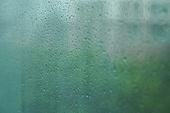 폭우 (비), 기상 (날씨), 일기예보 (인공), 날씨, 장마 (계절), 장마, 비 (물형태), 빗방울, 폭우