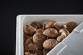 버섯 (균류), 유기농, 표고버섯, 건강식, 표고버섯 (식용버섯), 식용버섯
