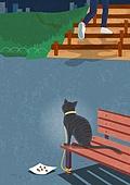 반려동물, 폐기 (나쁜상태), 유기묘, 고양이 (고양잇과), 밤 (시간대)