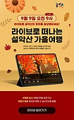 가을, 영상, 소셜미디어마케팅 (디지털마케팅), 공유 (컨셉), 상업이벤트 (사건), SNS (기술), 단풍나무 (낙엽수), 낙엽, 디지털태블릿 (개인용컴퓨터), 라이브방송