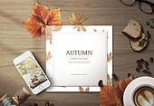 프레임, 가을, 편지, 감성
