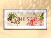 여름, 바다, 백그라운드, 액자 (예술도구), 그림자, 빛 (자연현상)