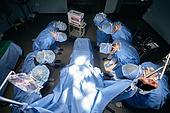 장기기증, 의료직 (의료계종사자), 치료 (사건), 의학 (과학), 질병 (건강이상), 수술 (치료), 수술실, 의사, 병원 (의료시설), 수술용루페 (광학기기)
