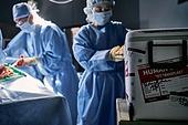 장기기증, 치료 (사건), 긴급 (컨셉), 질병 (건강이상), 의료보험 (보험), 수술 (치료), 수술실, 의사, 병원 (의료시설)