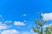 자연, 자연풍경 (교외전경), 풍경 (컨셉), 하늘풍경 (하늘), 하늘, 구름, 맑은하늘 (하늘)