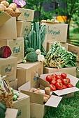 냉장배송 (배달), 프레시, 쇼핑 (상업활동), 상자 (용기), 포장, 농업 (주제), 수확 (움직이는활동), 유기농, 농작물, 산지직송 (배달)