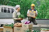 배달 (일), 배달부 (직업), 냉장배송 (배달), 채소, 농업 (주제), 농부 (농촌직업), 농작물, 산지직송, 트럭 (육상교통수단)