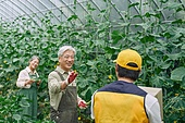 배달 (일), 냉장배송 (배달), 상자 (용기), 채소, 채소밭, 농업, 농부 (농촌직업), 유기농, 산지직송 (배달), 택배배달부 (배달부)