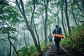남성 (성별), 오솔길 (보행로), 산림, 여행, 백패커 (여행하기), 하이킹 (아웃도어), 걷기 (물리적활동), 뒷모습