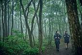 남성 (성별), 오솔길 (보행로), 산림, 여행, 백패커 (여행하기), 하이킹 (아웃도어), 걷기 (물리적활동), 길