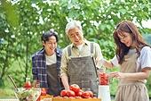 라이브커머스, 라이브방송, 인플루언서, 토마토, 토마토주스, 유기농농장, 믹서 (식품가공기)