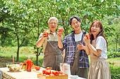라이브커머스, 토마토, 토마토주스, 산지직송, 신선식품, 농업, 유기농, 건강한생활