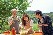토마토, 산지직송, 신선식품, 유기농, 텃밭작물 (경작), 농작물, 건강식, 샐러드, 채소 (음식)