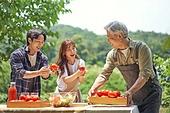 라이브커머스, 라이브방송, 인플루언서, 토마토, 산지직송, 농업 (주제), 유기농, 농작물, 유기농농장