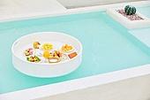 수영장, 음식, 디저트, 음료, 과일, 여름