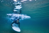 여름, 서핑, 바다, 휴가 (주제), 익스트림스포츠 (스포츠), 수상스포츠, 서핑보드 (수중스포츠장비), 운동, 여가 (주제), 도전 (컨셉)