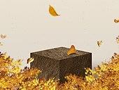 연단 (인조물건), 목업, 빔 (상태), 상품 (인조물건), 상품진열 (소매업장비), 단순 (컨셉), 광고, 카피스페이스, 가을, 돌 (암석), 낙엽