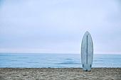 해변, 서핑, 서핑보드 (수중스포츠장비), 새벽, 일출 (새벽), 여행