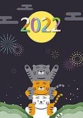 호랑이 (고양잇과큰동물), 2022년, 호랑이띠해 (십이지신), 새해 (홀리데이), 불꽃놀이