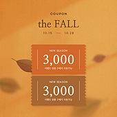 가을, 쿠폰, 상업이벤트 (사건), 세일 (상업이벤트), 낙엽