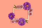 Top view of flower border frame made of dahlia on a coral color background.