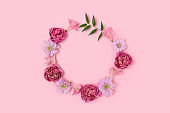 Round frame made of rose, aster and alstroemeria on a pink pastel background.