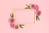 Top view of flower border frame made of dahlia on a pink background.