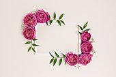 Empty flower frame made of rose on a beige background.