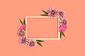 Flower border frame made of dahlia on a coral pastel background.