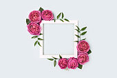 Square flower frame made of pink rose on a blue pastel background.