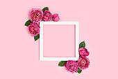 Empty flower frame made of rose on a pink pastel background.