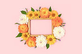 Top view of flower border frame made of dahlia, arnica and green leaves on a pink background.