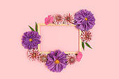 Top view of flower border frame made of dahlia on a pink pastel background.