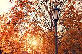 Autumn landscape. Lantern in the autumn city park, lantern against autumn trees at sunset