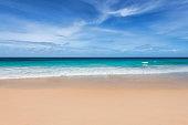 Sunny tropical beach and sea background