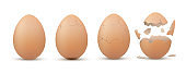 Eggshell cracking stages. Egg breaking sequence, steps realistic templates.