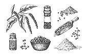 Hand drawn pepper. Kitchen seasoning realistic sketch. Whole or ground pungent spice. Powder heaps, pepperbox and scoops full of peas. Vector branch or bowl with cooking ingredient