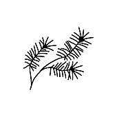Single hand drawn Christmas pine twig. Vector illustration in doodles style. Isolated on white background.