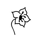 Single hand drawn flower head. Vector illustration in doodles style. Isolate on a white background.