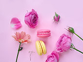 multicolored macaroon, rose flower on a colored background