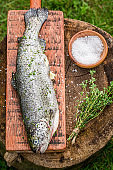 Top view of fresh trout with thyme and salt
