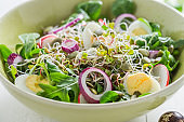 Salad with onion, quail egg and sprouts. Healthy spring salad.