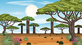 African Savanna forest landscape scene at day time