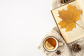 Top view photo of sweater cup of tea with lemon anise pine cones and yellow autumn maple leaf on open book on isolated white background with copyspace