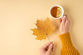 First person photo of female hands in yellow pullover holding yellow autumn maple leaf and cup of tea with lemon on isolated light orange background with copyspace