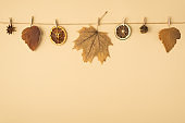 Top view photo of brown autumn leaves anise cone and dried citrus slices attached to twine rope with wooden clothespins on isolated pastel orange background with copyspace